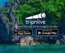 tripnlive